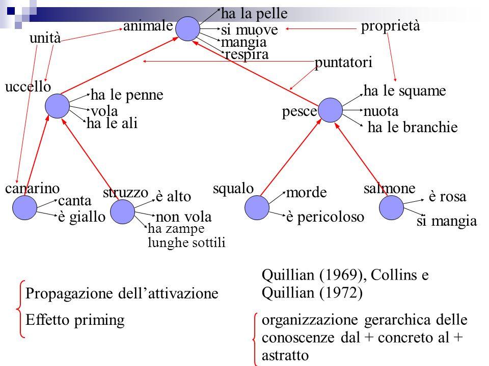 Quillian (1969), Collins e Quillian (1972)