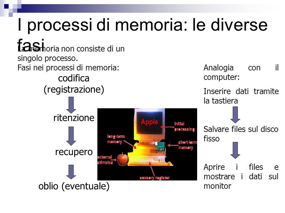 I processi di memoria: le diverse fasi