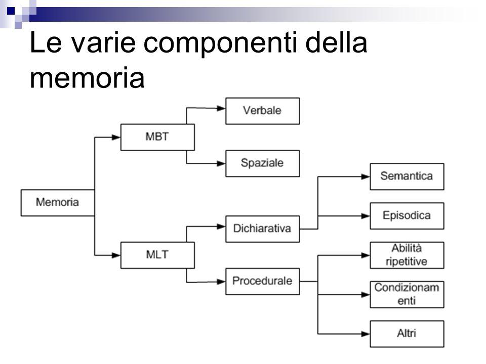 Le varie componenti della memoria
