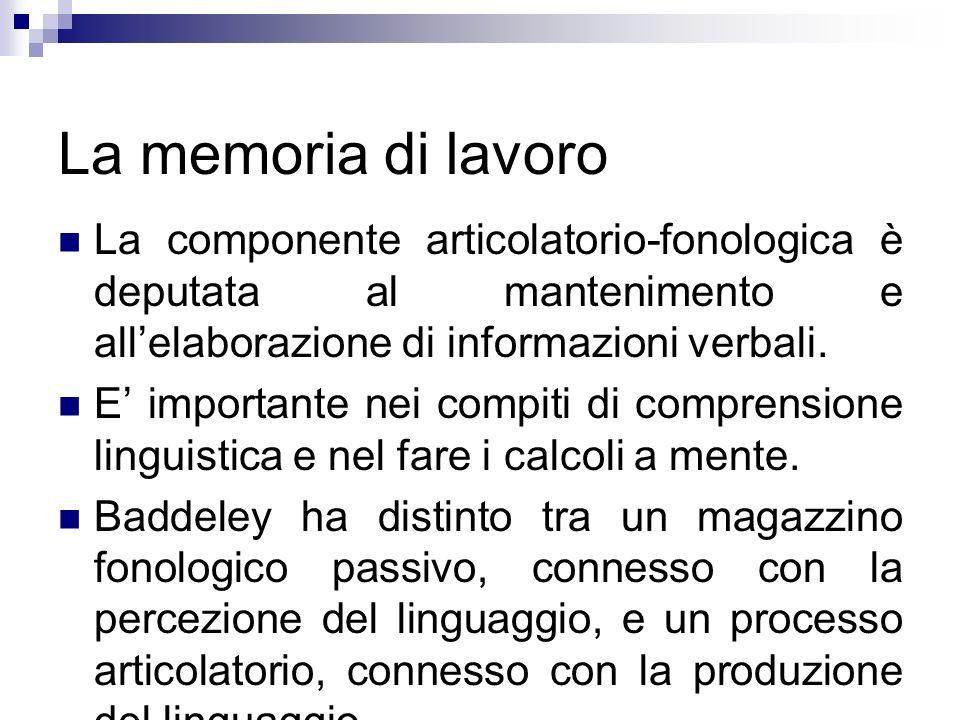 La memoria di lavoroLa componente articolatorio-fonologica è deputata al mantenimento e all'elaborazione di informazioni verbali.