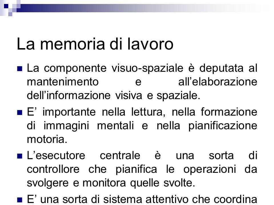 La memoria di lavoro La componente visuo-spaziale è deputata al mantenimento e all'elaborazione dell'informazione visiva e spaziale.