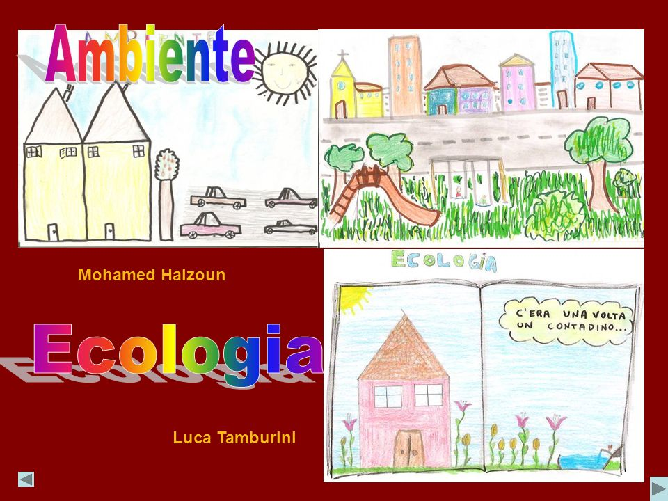 Ambiente Mohamed Haizoun Ecologia Luca Tamburini