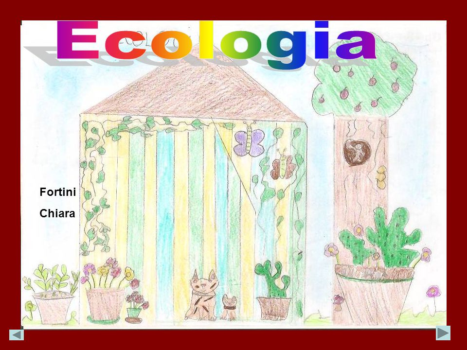 Ecologia Fortini Chiara