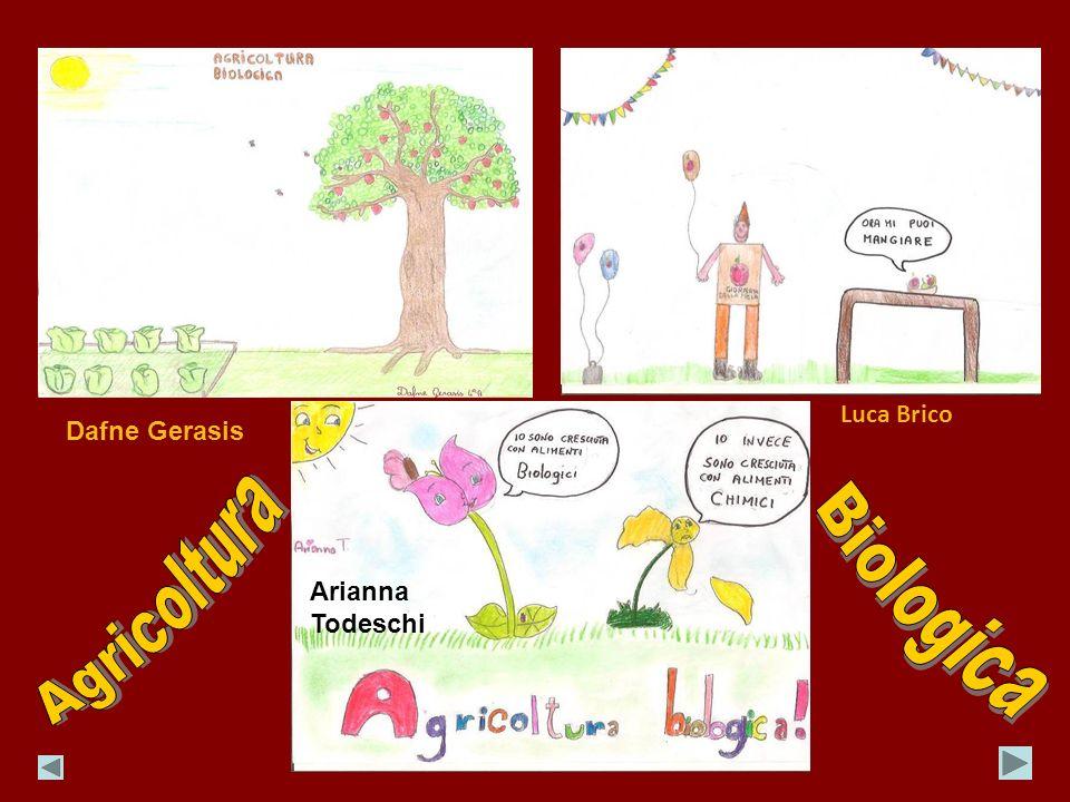 Luca Brico Dafne Gerasis Agricoltura Biologica Arianna Todeschi