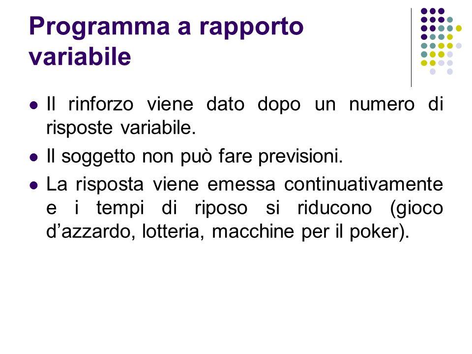 Programma a rapporto variabile