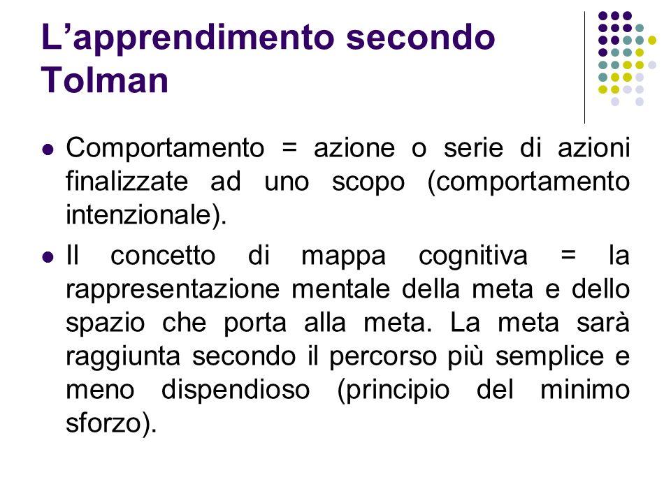 L'apprendimento secondo Tolman