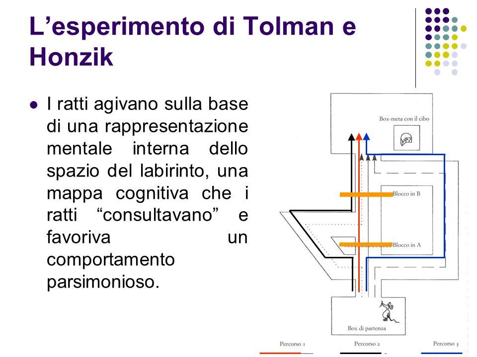 L'esperimento di Tolman e Honzik