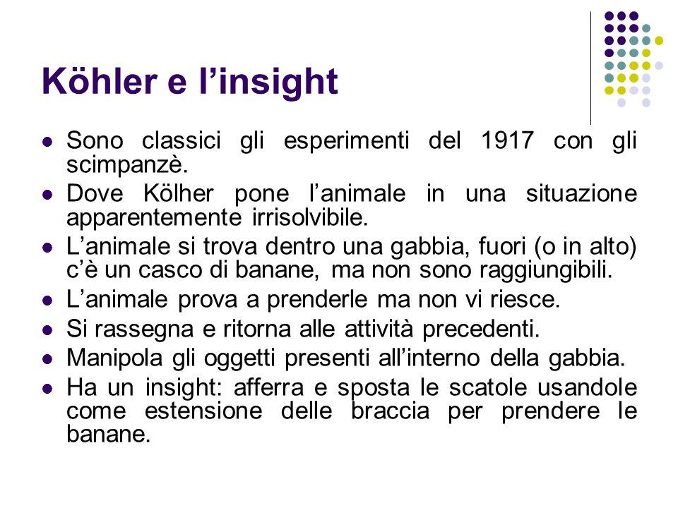 Köhler e l'insight Sono classici gli esperimenti del 1917 con gli scimpanzè.