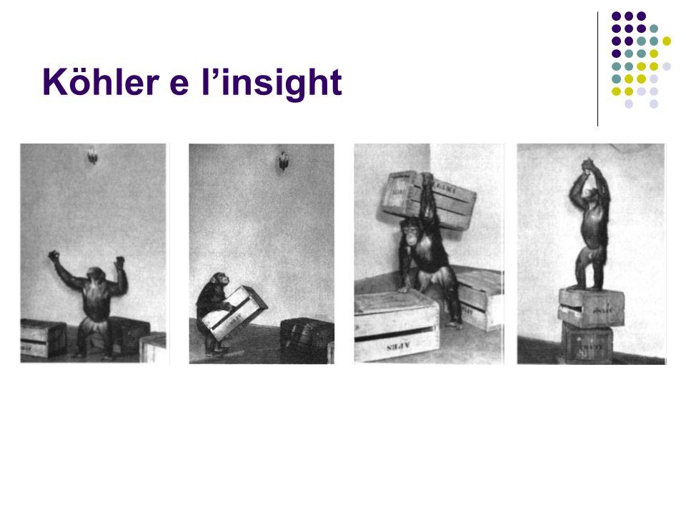 Köhler e l'insight