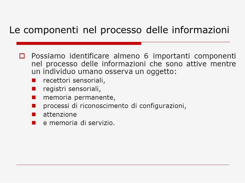 Le componenti nel processo delle informazioni