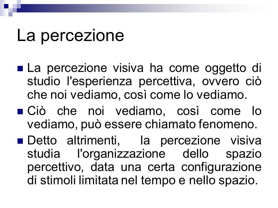 La percezione La percezione visiva ha come oggetto di studio l esperienza percettiva, ovvero ciò che noi vediamo, così come lo vediamo.