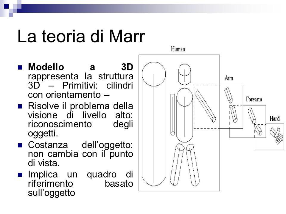 La teoria di Marr Modello a 3D rappresenta la struttura 3D – Primitivi: cilindri con orientamento –