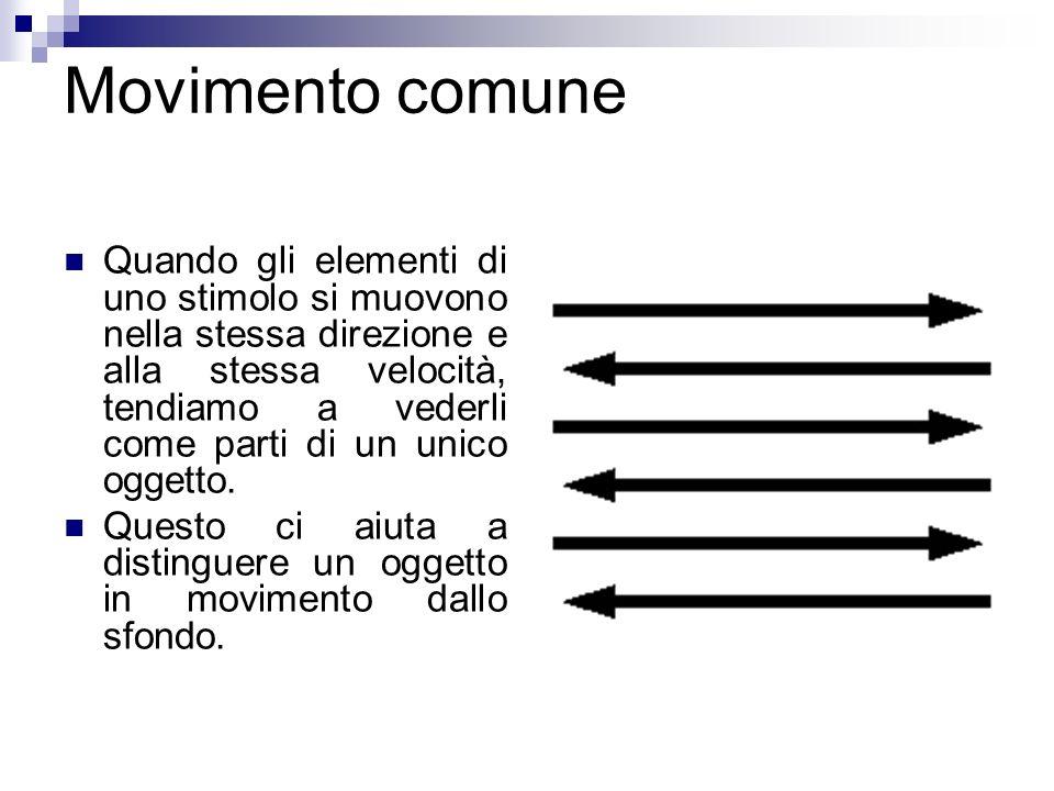 Movimento comune
