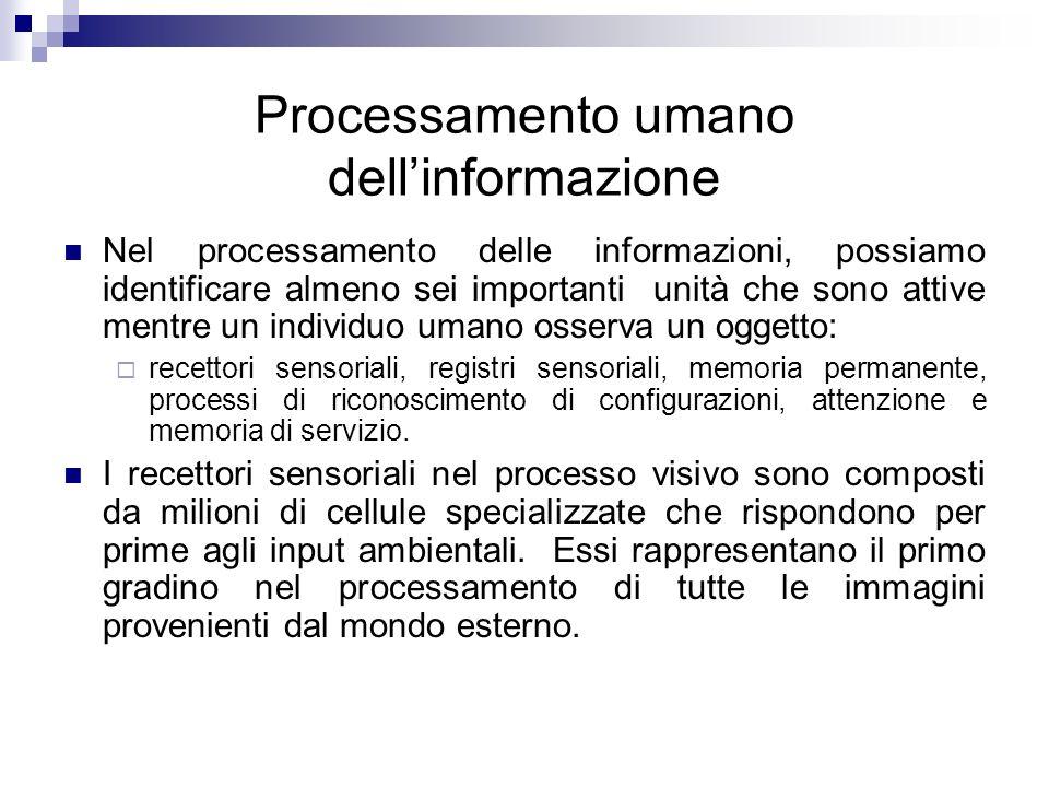 Processamento umano dell'informazione