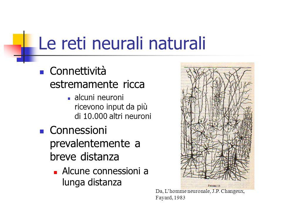 Le reti neurali naturali