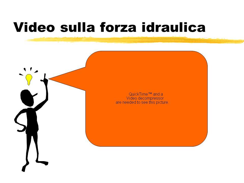 Video sulla forza idraulica