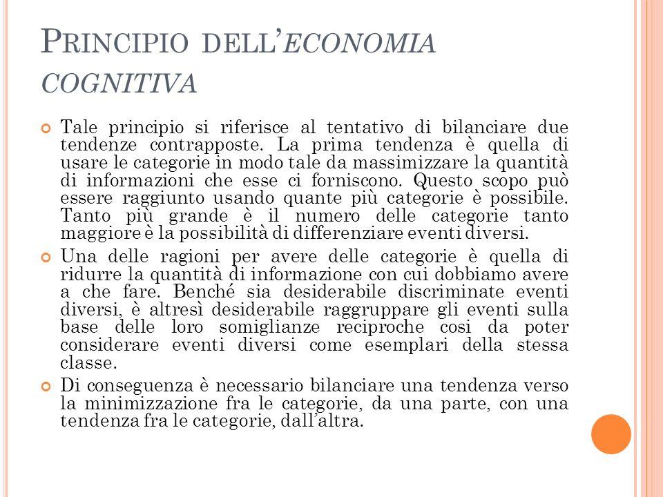 Principio dell'economia cognitiva
