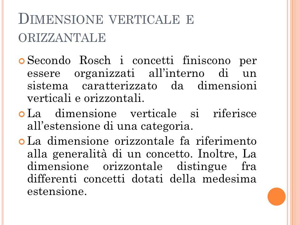 Dimensione verticale e orizzantale