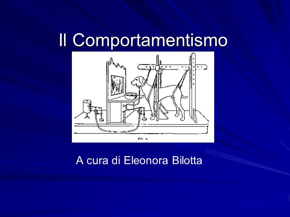 A cura di Eleonora Bilotta