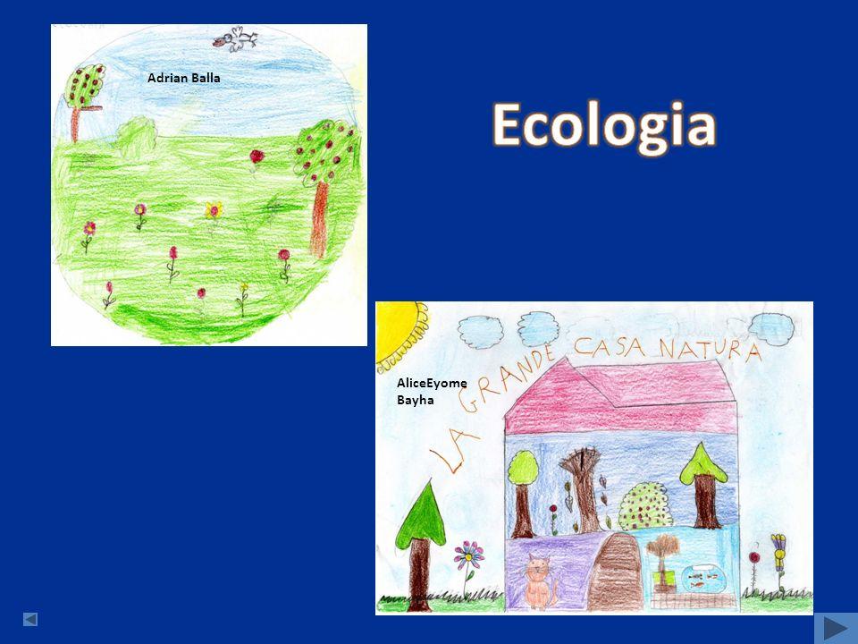 Adrian Balla Ecologia AliceEyome Bayha