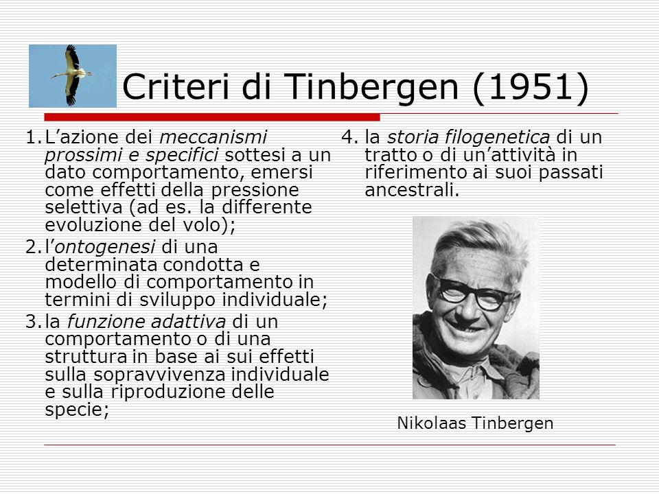 Criteri di Tinbergen (1951)