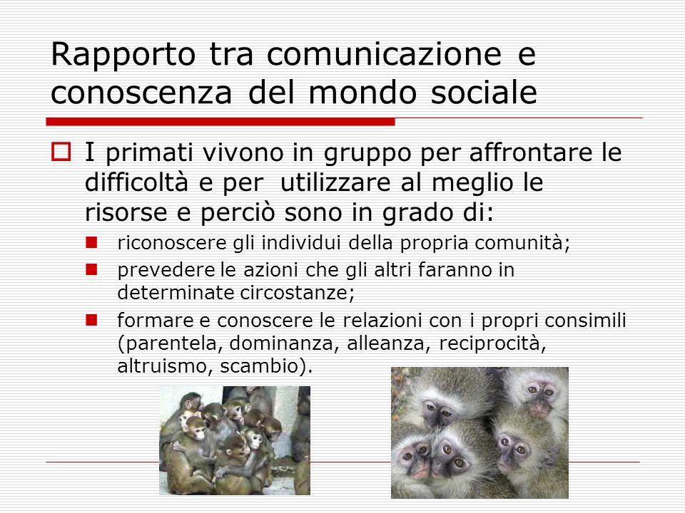 Rapporto tra comunicazione e conoscenza del mondo sociale