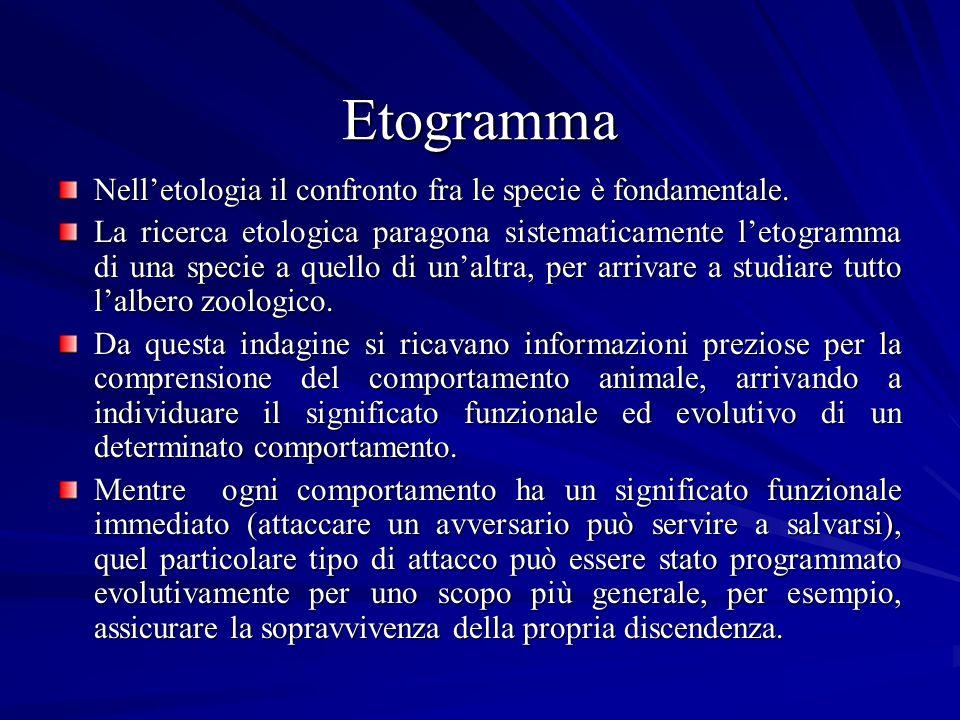 Etogramma Nell'etologia il confronto fra le specie è fondamentale.