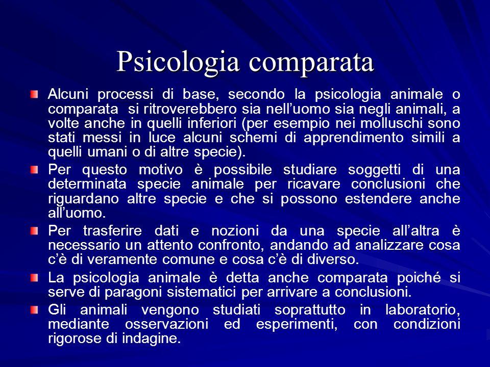 Psicologia comparata