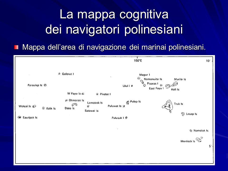 La mappa cognitiva dei navigatori polinesiani