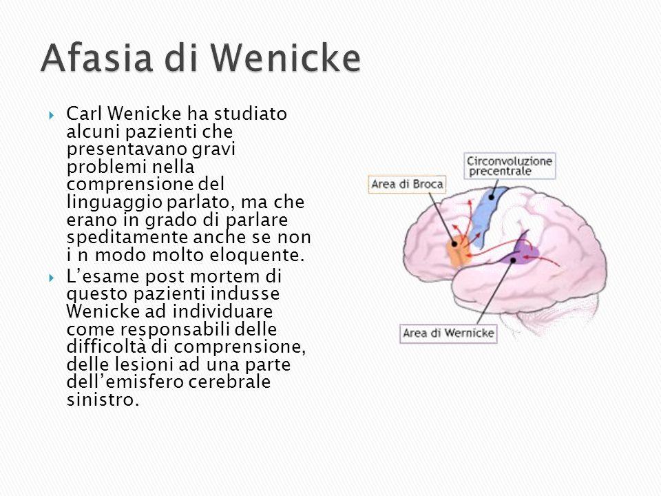 Afasia di Wenicke