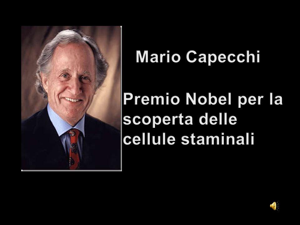 Premio Nobel per la scoperta delle cellule staminali