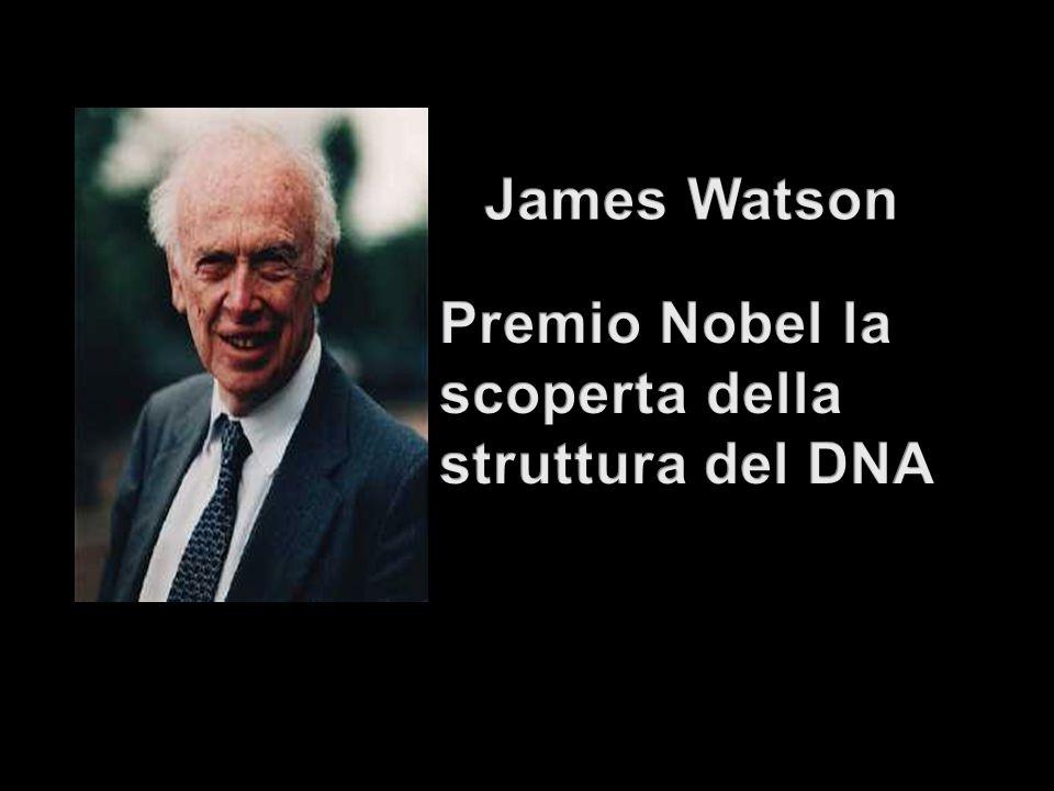 James Watson Premio Nobel la scoperta della struttura del DNA