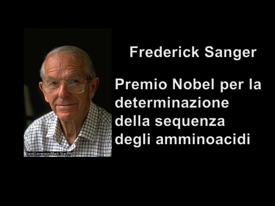 Frederick Sanger Premio Nobel per la determinazione della sequenza degli amminoacidi