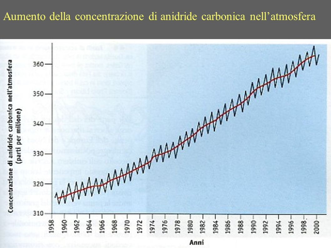 Aumento della concentrazione di anidride carbonica nell'atmosfera