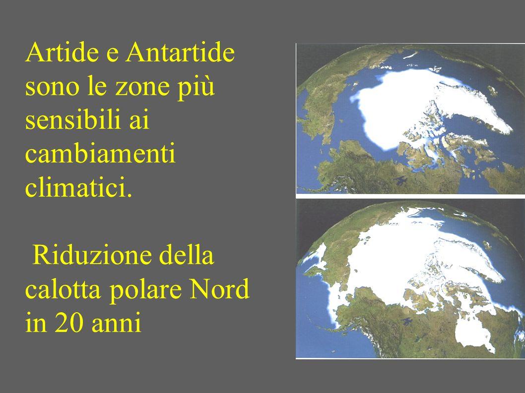 Artide e Antartide sono le zone più sensibili ai cambiamenti climatici. Riduzione della. calotta polare Nord.