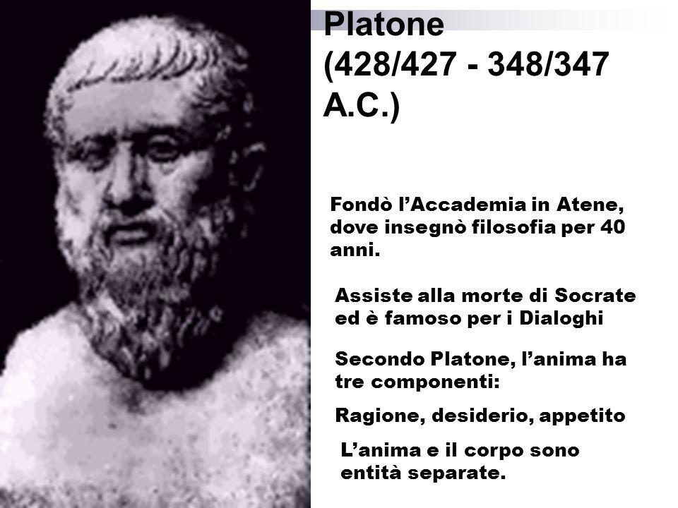 Platone (428/427 - 348/347 A.C.) Fondò l'Accademia in Atene, dove insegnò filosofia per 40 anni. Assiste alla morte di Socrate.