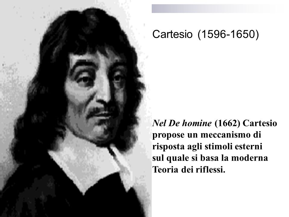 Cartesio (1596-1650) Nel De homine (1662) Cartesio