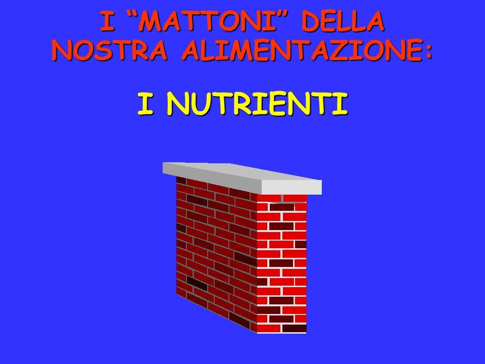 I MATTONI DELLA NOSTRA ALIMENTAZIONE: I NUTRIENTI