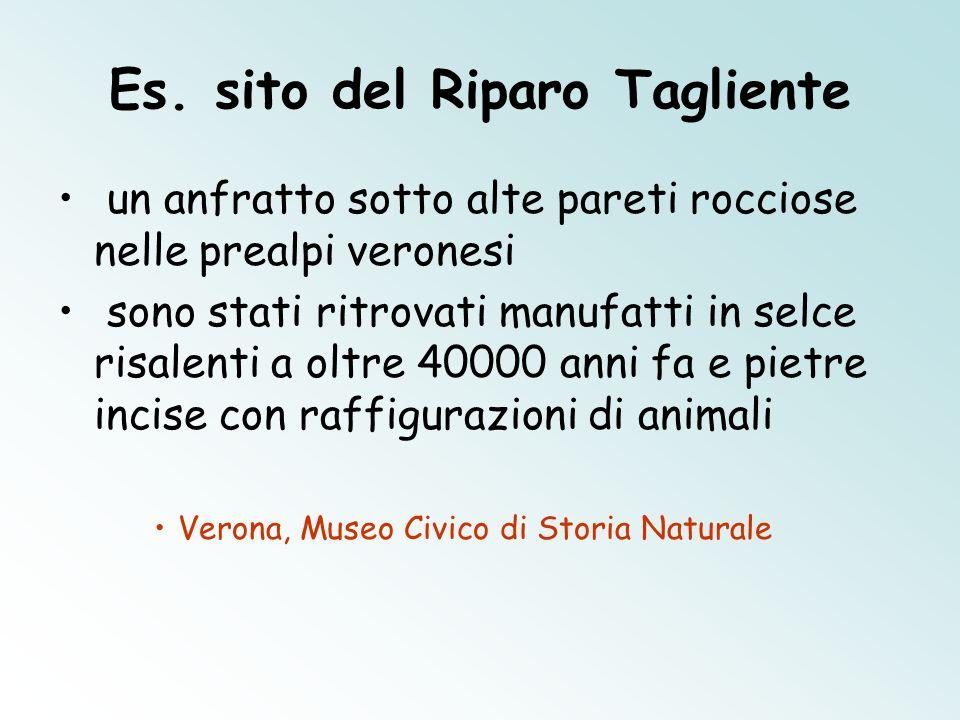 Es. sito del Riparo Tagliente