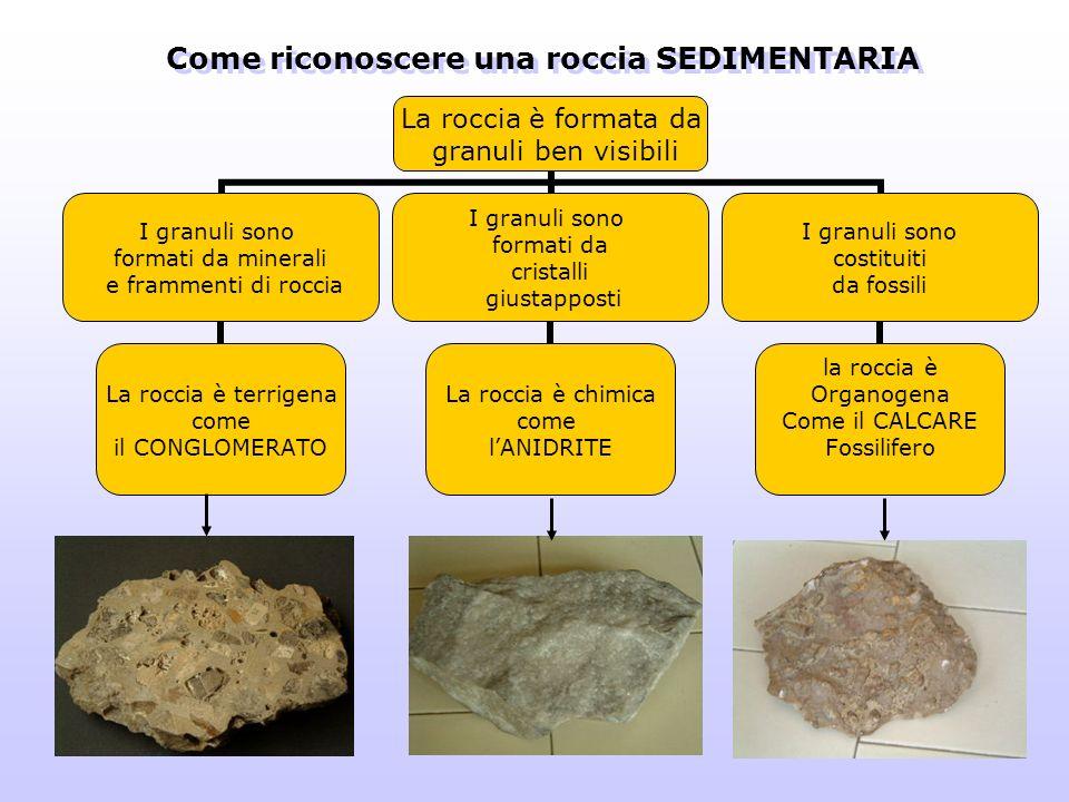 Come riconoscere una roccia SEDIMENTARIA