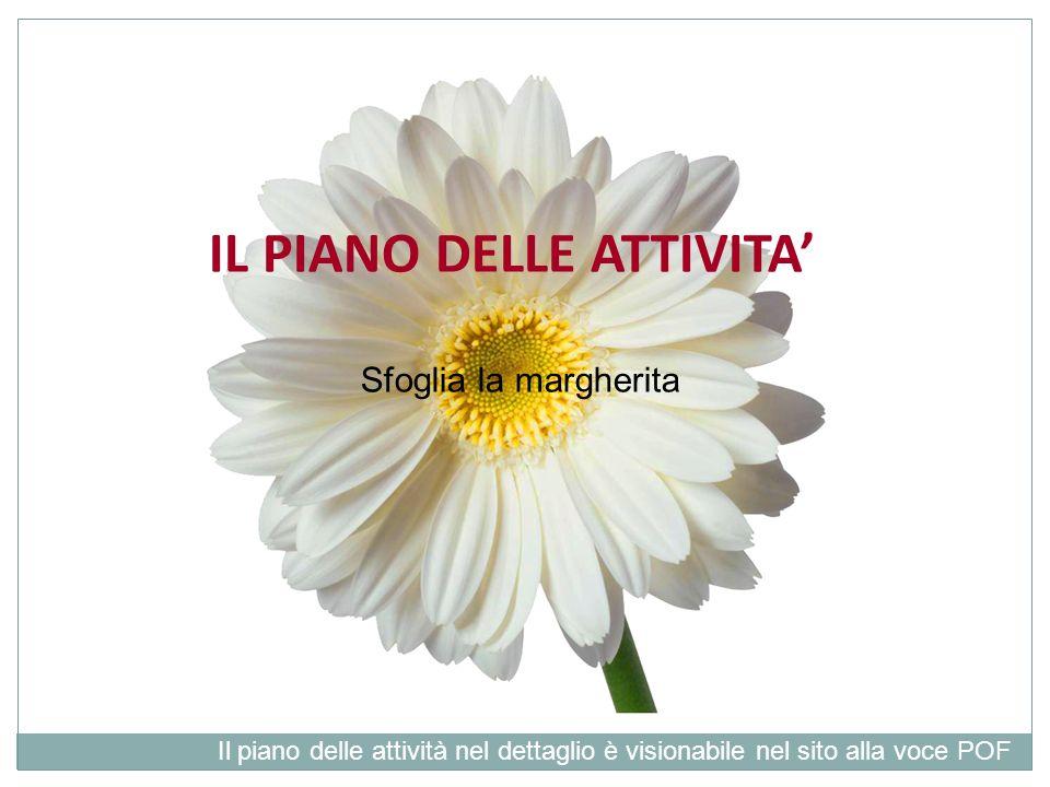 IL PIANO DELLE ATTIVITA'