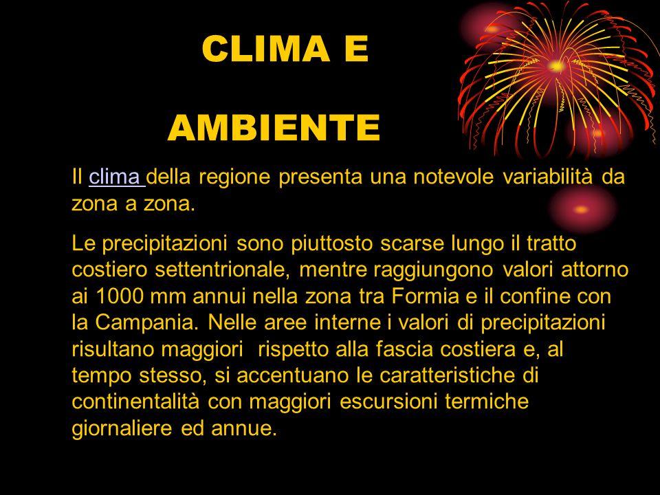 CLIMA E AMBIENTE Il clima della regione presenta una notevole variabilità da zona a zona.