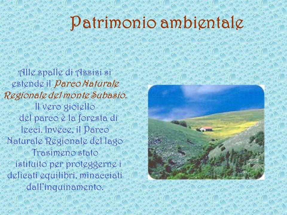 Patrimonio ambientale