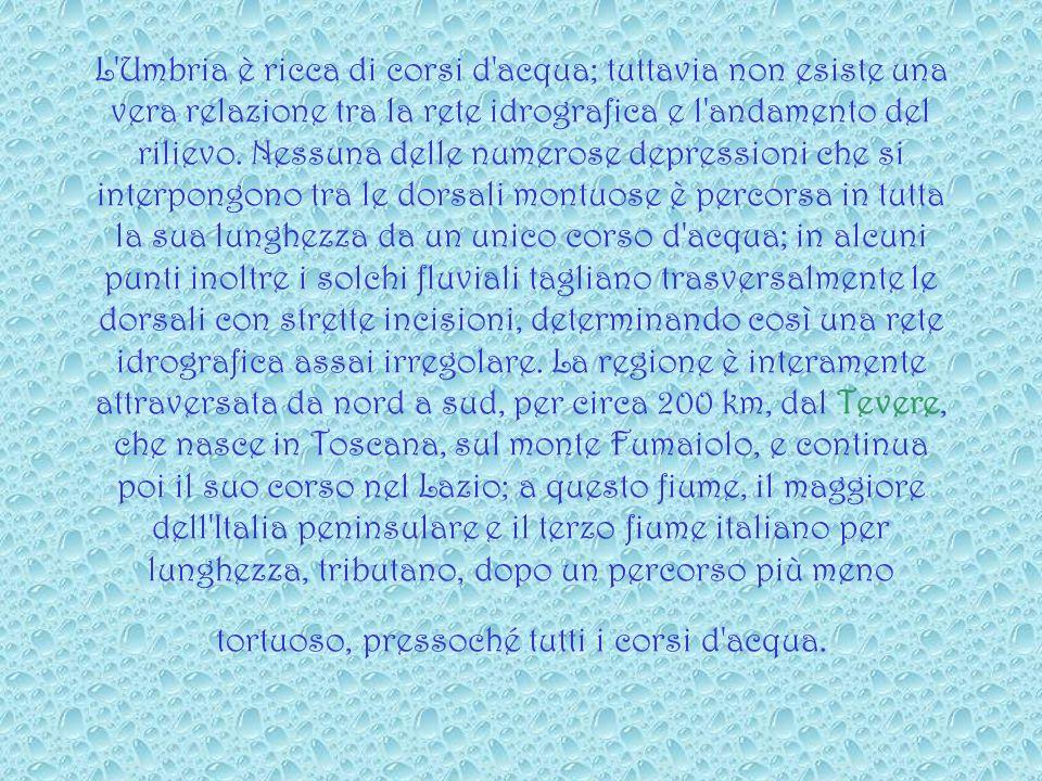 L Umbria è ricca di corsi d acqua; tuttavia non esiste una vera relazione tra la rete idrografica e l andamento del rilievo.