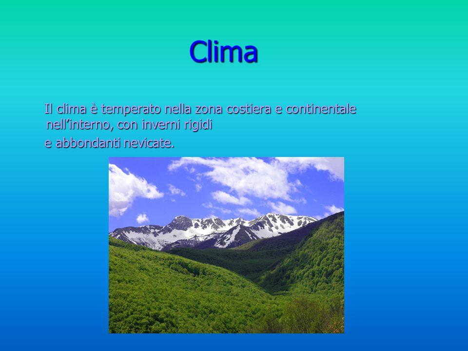 Clima Il clima è temperato nella zona costiera e continentale nell'interno, con inverni rigidi.
