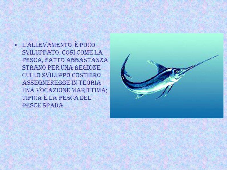 L allevamento è poco sviluppato, così come la pesca, fatto abbastanza strano per una regione cui lo sviluppo costiero assegnerebbe in teoria una vocazione marittima; tipica è la pesca del pesce spada
