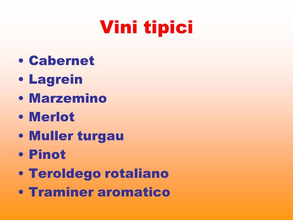 Vini tipici Cabernet Lagrein Marzemino Merlot Muller turgau Pinot
