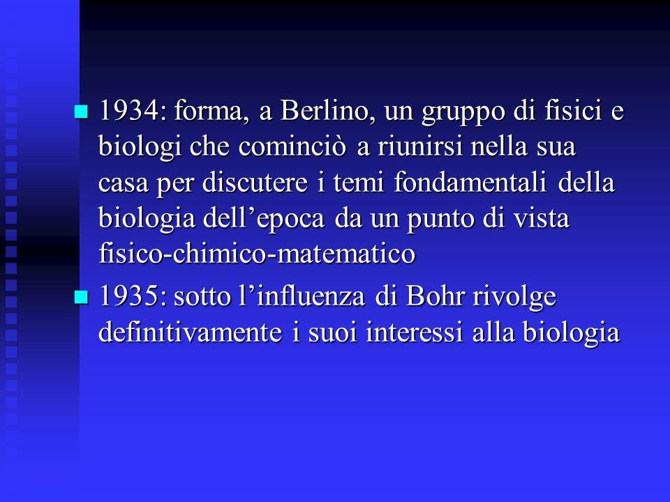 1934: forma, a Berlino, un gruppo di fisici e biologi che cominciò a riunirsi nella sua casa per discutere i temi fondamentali della biologia dell'epoca da un punto di vista fisico-chimico-matematico
