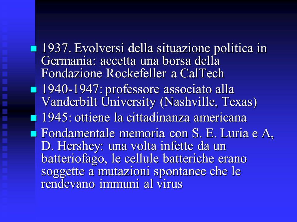 1937. Evolversi della situazione politica in Germania: accetta una borsa della Fondazione Rockefeller a CalTech