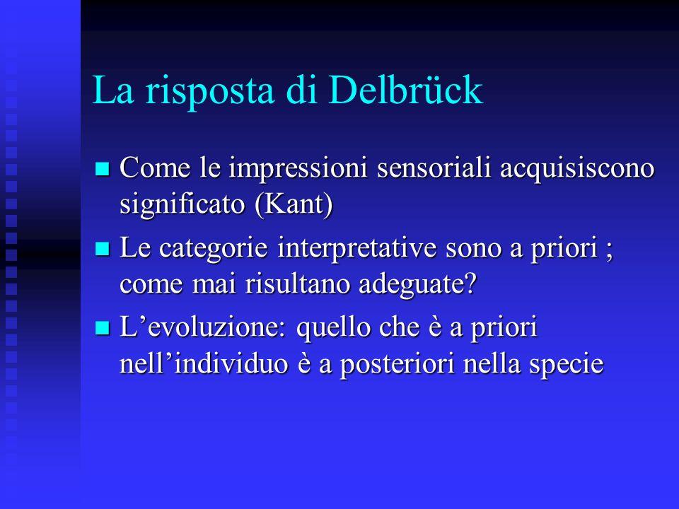 La risposta di Delbrück
